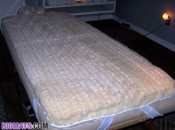 Organic Wool bedding